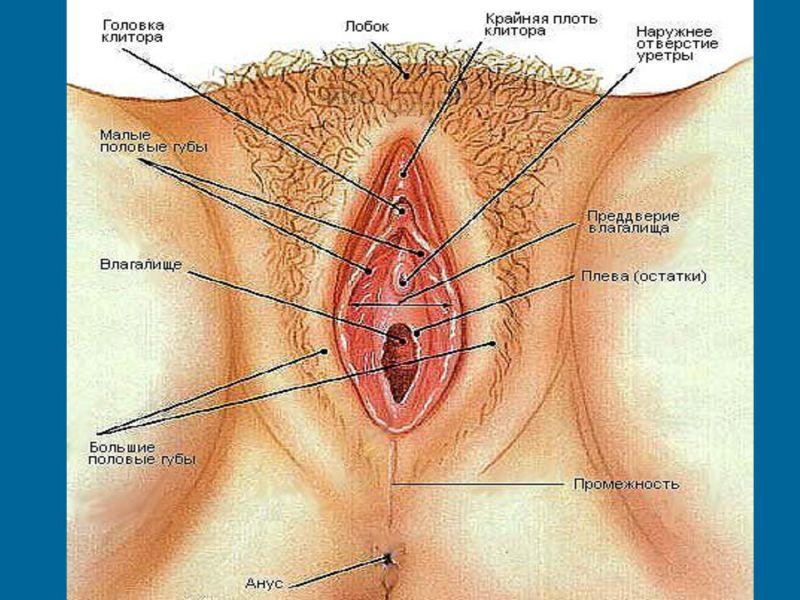 Если болит клитор после родов?